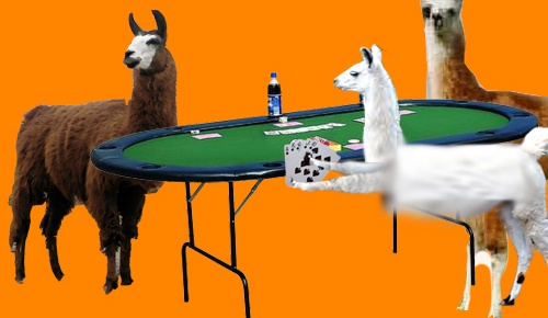 poker_playing_llamas_by_flyingsneakerz11
